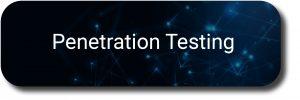 Penetration Testing Banner